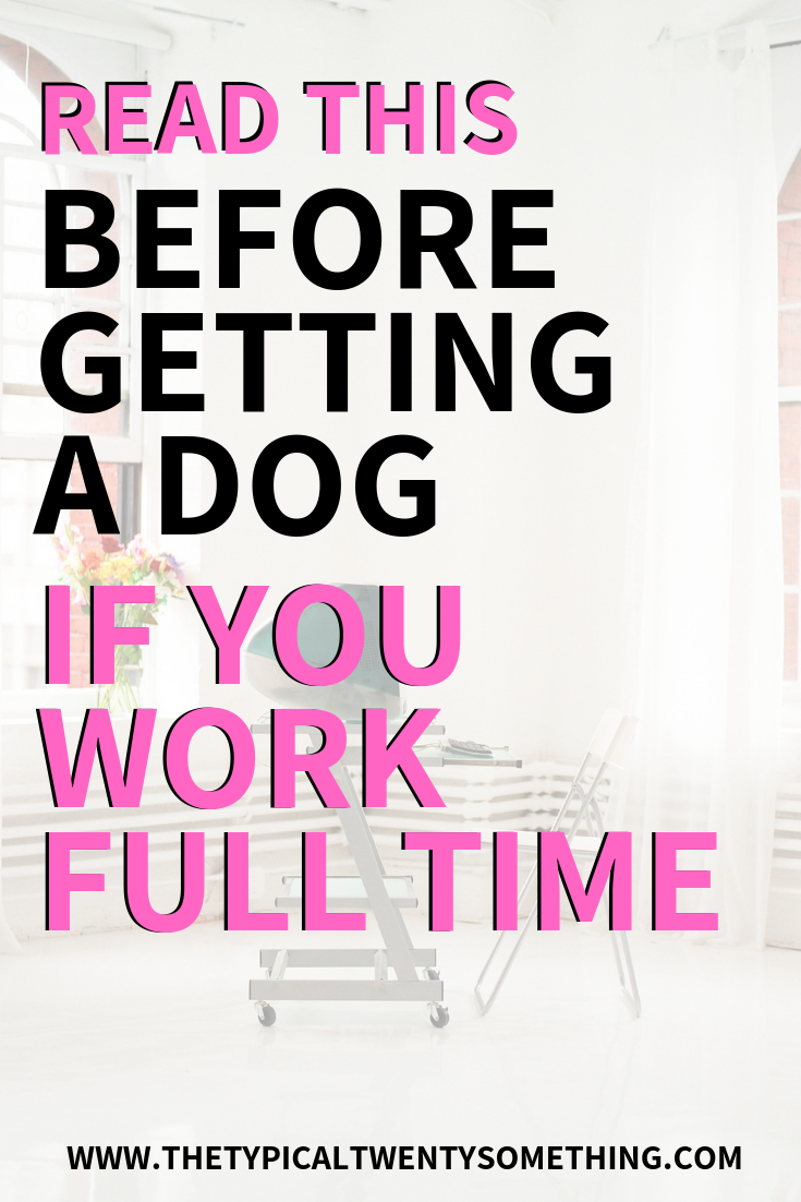 How can you deal with getting a dog while working full time? This post explores it all, how you can have a full time job while having a dog.